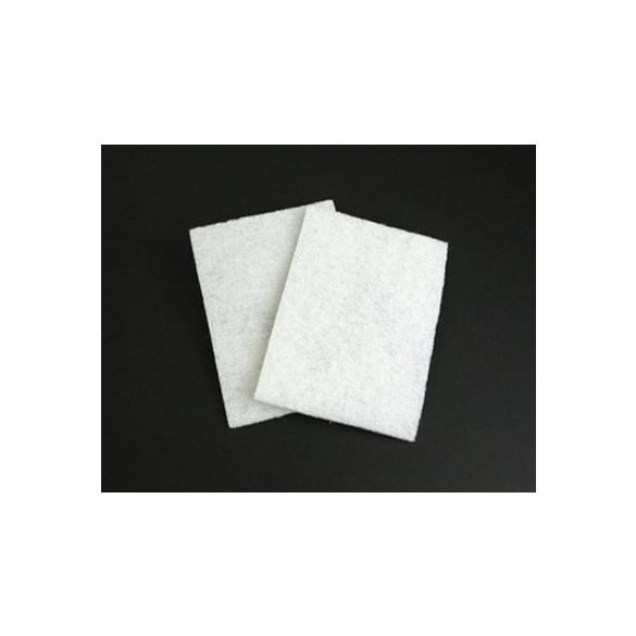 ProClean Cleaning Pad (2 Pack)